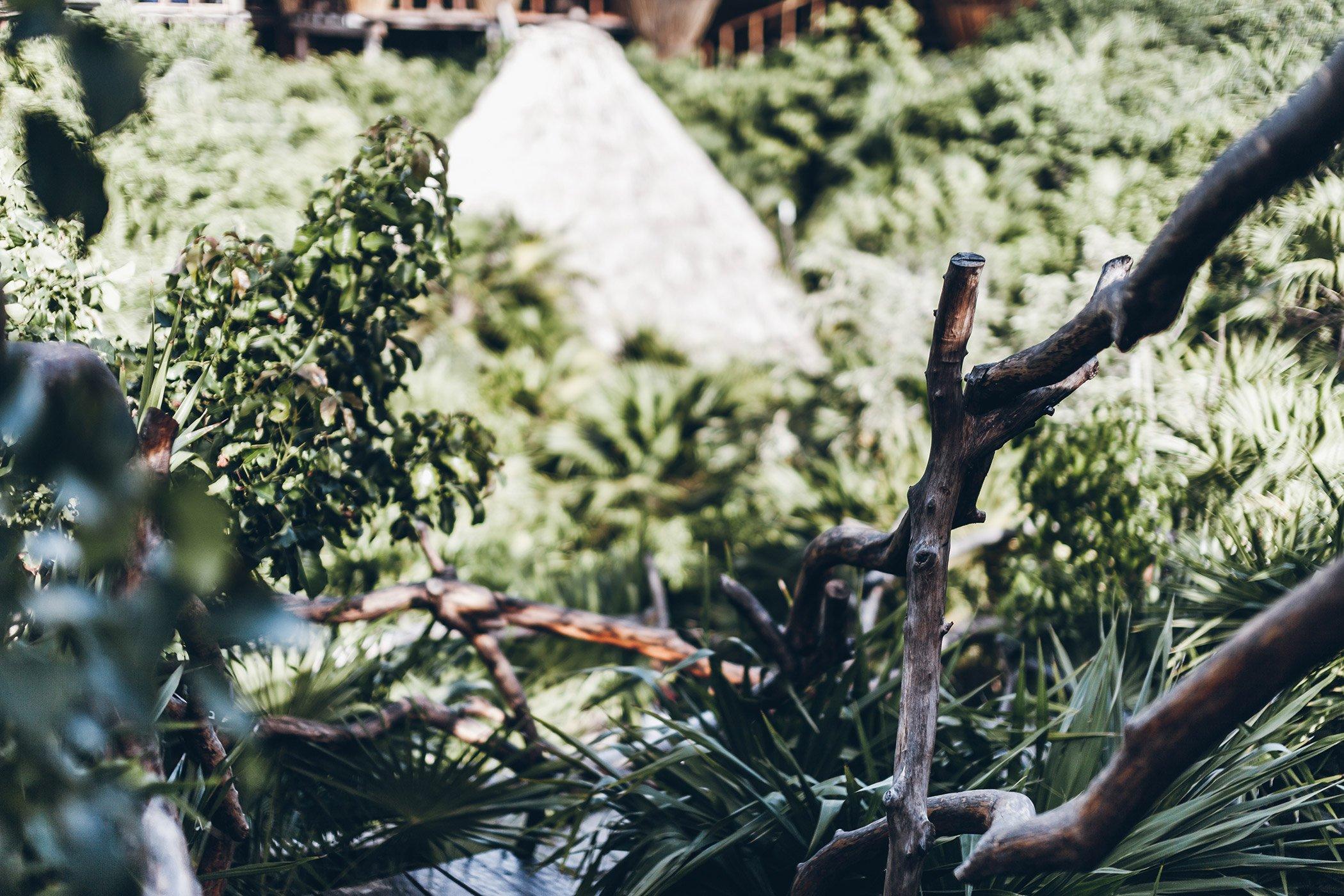mikuta-azulik-tulum-17